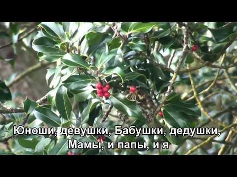 Соловей - ВИА Поющие гитары (1971) (Subtitles)